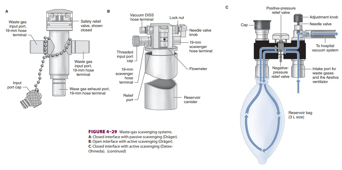 Anesthesia Waste Gas Scavengers