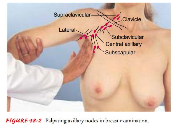 Assessment of Patients With Breast Disorders