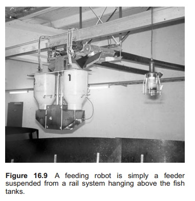 Central feeding system - feeding equipment in Aquaculture