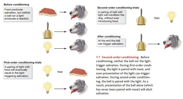 Classical Conditioning: Acquisition of Conditioned Responses