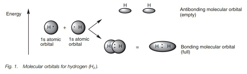 Covalent bonding and hybridization