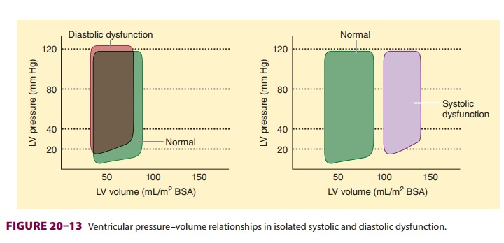 Effects of Anesthetic Agents on Heart