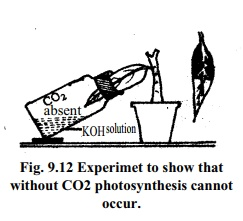 Experiment to show that photosynthesis cannot occur without CO2