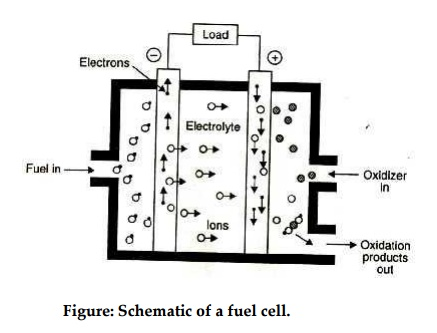 Fuel cell with Schematic diagram