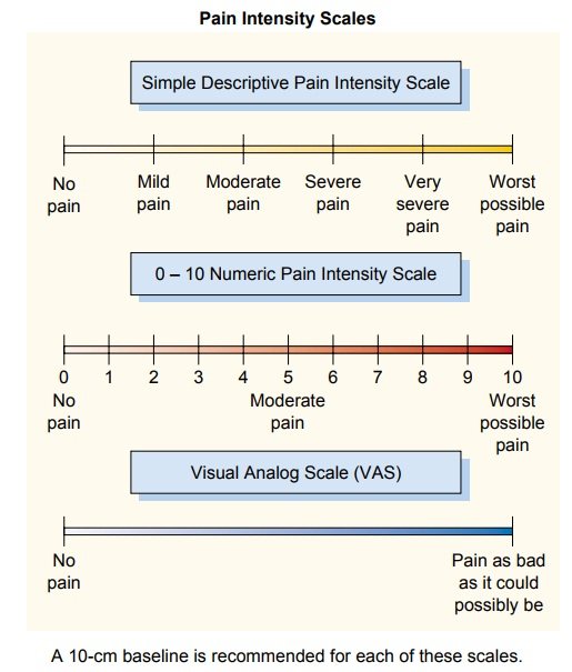 Instruments for Assessing the Perception of Pain