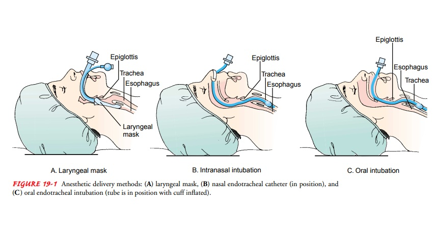 Methods of Anesthesia Administration - Surgical Experience