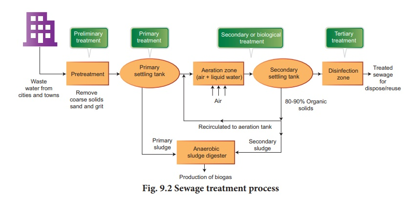 Microbes in sewage treatment and energy generation