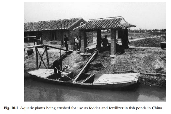 Prevention of infestations and utilization of weeds - Methods of weed control in Aquaculture