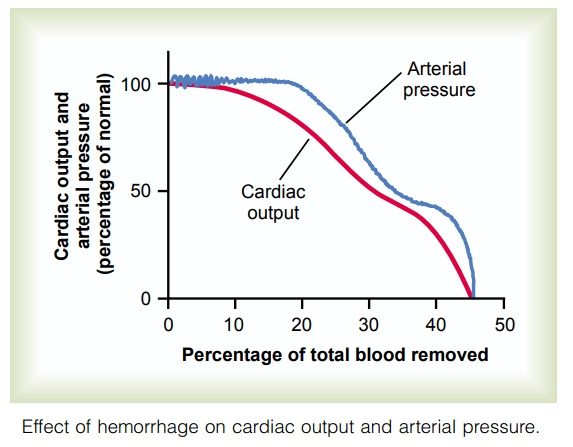 Relationship of Bleeding Volume to Cardiac Output and Arterial Pressure