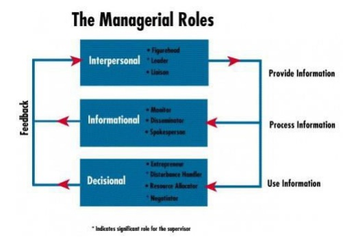 functional roles of a manager In a matrix environment, key players have critical roles in every project's success working in a matrix environment requires that the project manager deal with the styles, interests, and demands of more people who have some degree of control over his project's resources, goals, and objectives than in a functional or projectized structure.