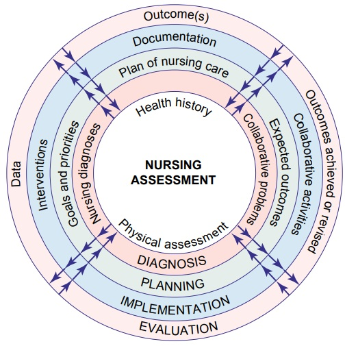 Steps of the Nursing Process