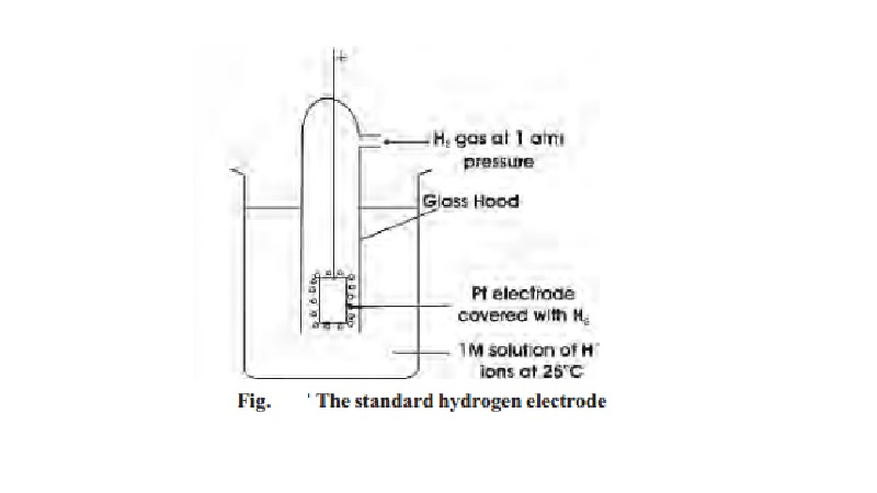 Single Electrode Potential