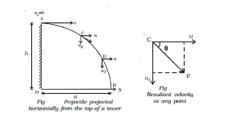 Motion of a projectile thrown horizontally