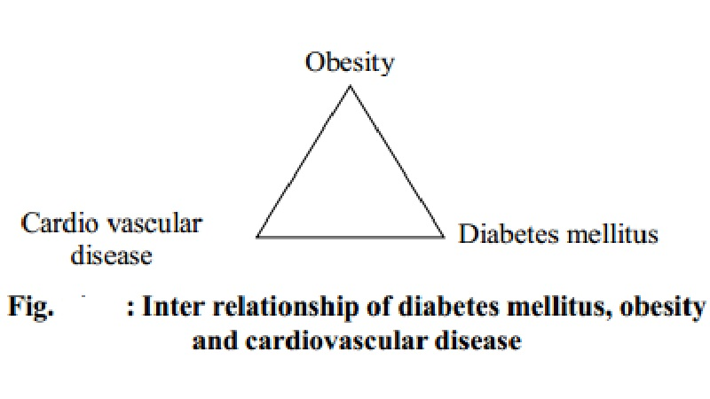 Ill Effects of Obesity and Underweight