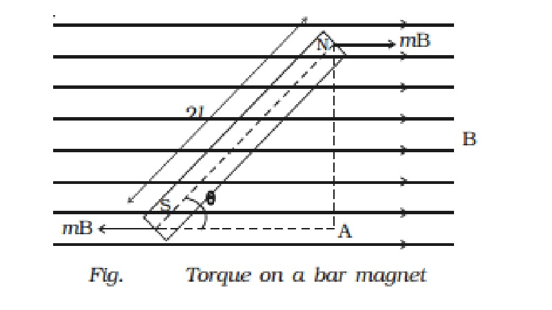 Torque on a bar magnet placed in a uniform magnetic field