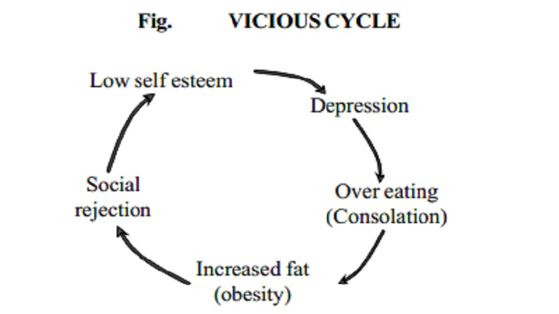 Factors that contribute to obesity