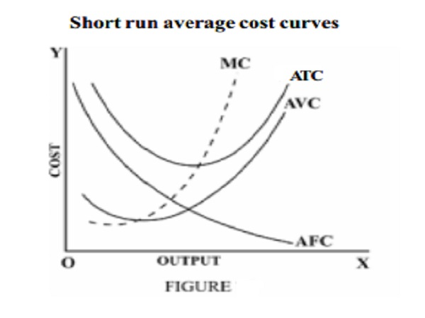 Short run average cost curves - Average Fixed, Average variable and Average Total Cost