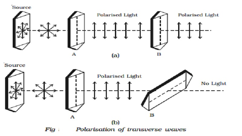 Polarisation of transverse waves