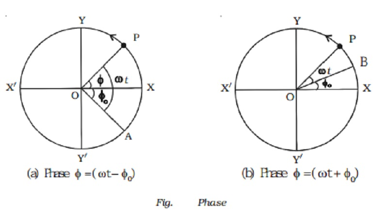 Important terms in simple harmonic motion