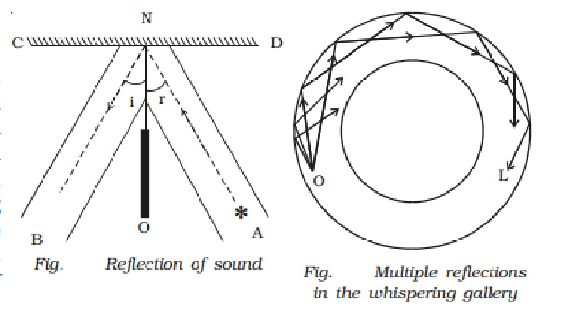 Applications of reflection of sound waves