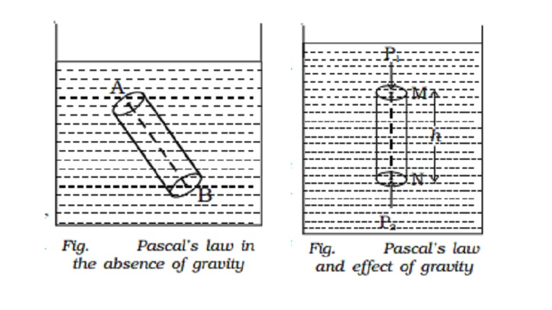 Pascal's law and effect of gravity