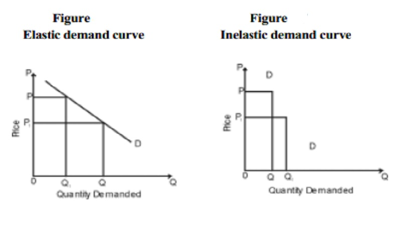 Elasticity of Demand and Types of Elasticity of Demand