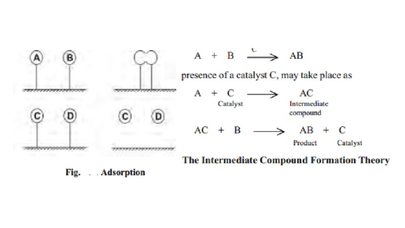 Theories Of Catalysis