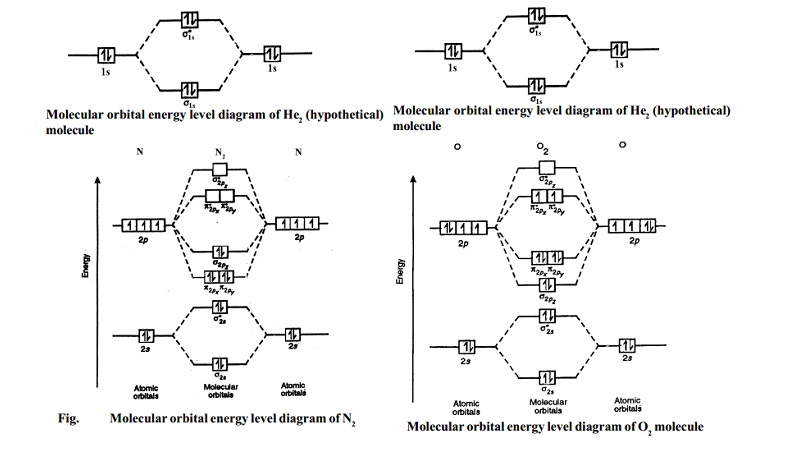 Molecular orbital energy level diagrams -Hydrogen, Hypothetical, Nitrogen, Oxygen