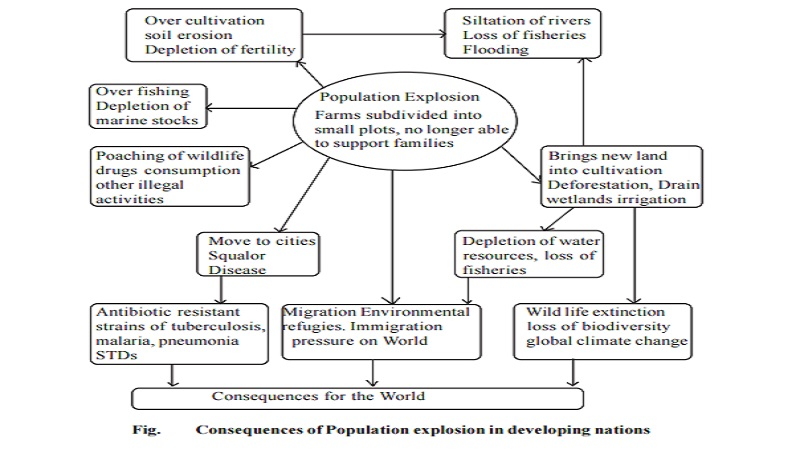 reasons for the explosion impacts of growing population and  impacts of growing population and environmental
