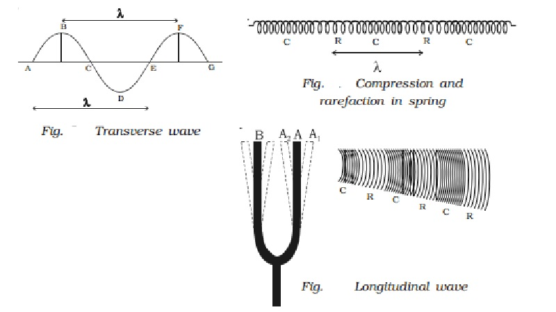 Mechanical wave motion - Transverse and Longitudinal wave motion