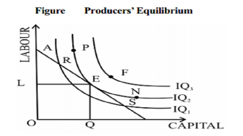 Producer's Equilibrium and The Cobb Douglas Production Function