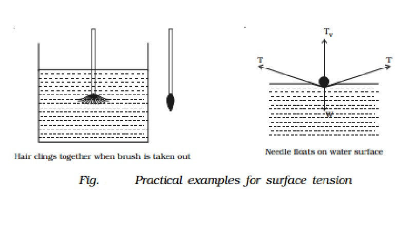 Experiments to demonstrate surface tension