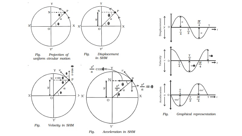 The projection of uniform circular motion on a diameter is SHM