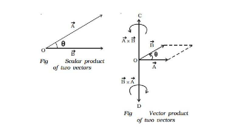 Multiplication of two vectors