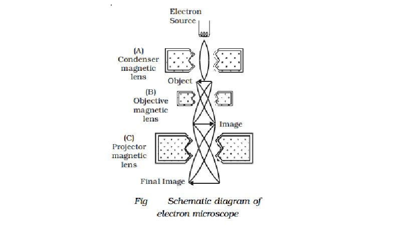 Electron microscope: Construction, working, Uses, Limitations