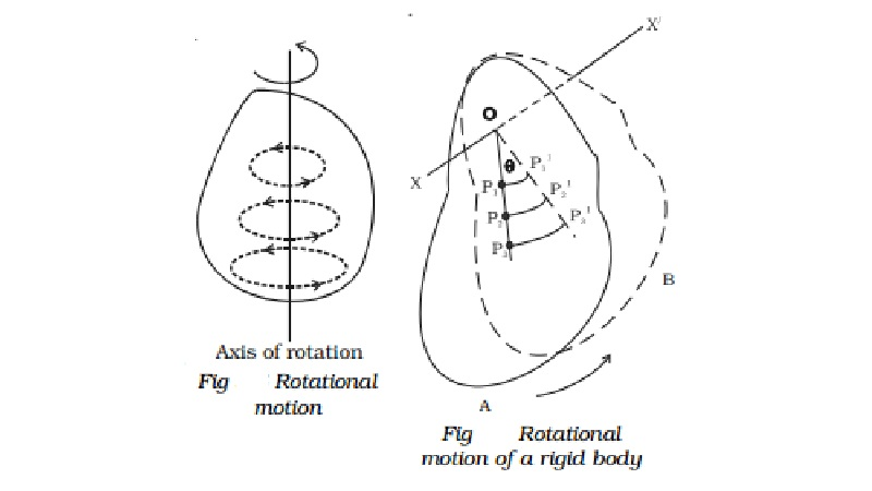 Rotational motion of rigid bodies