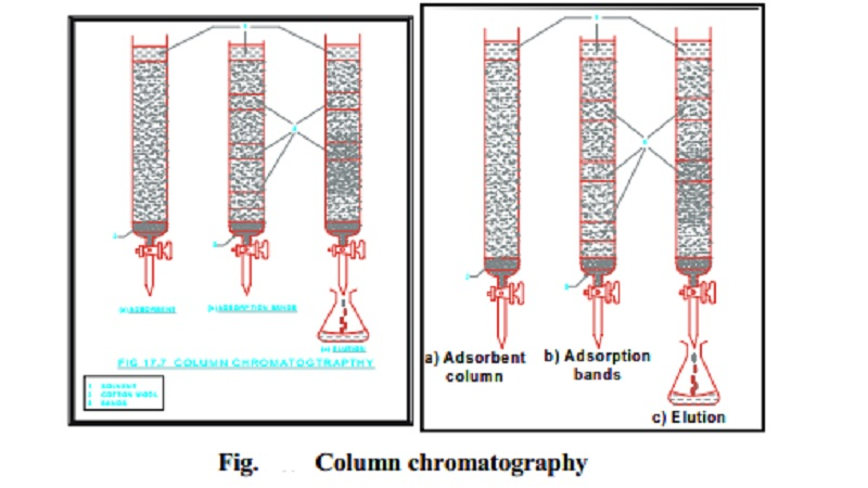 Chromatography and Different Chromatographic Techniques
