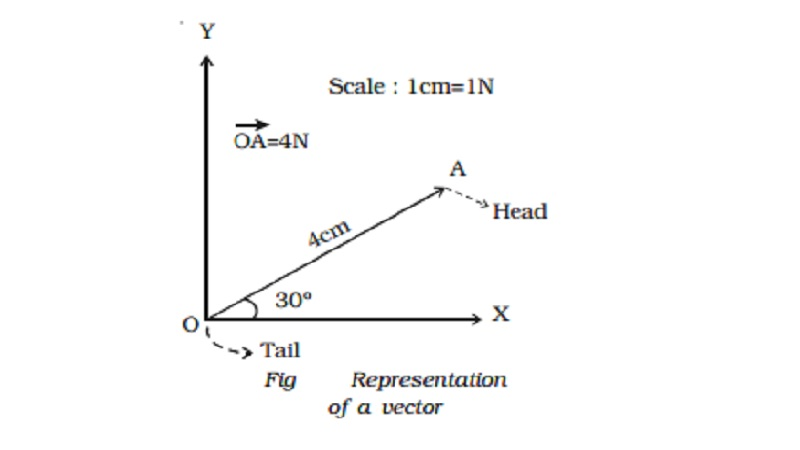 Representation of a vector quantities