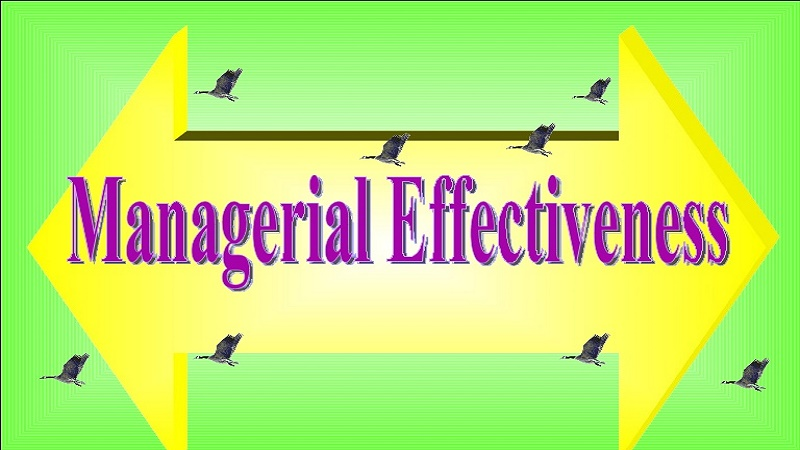 Managerial Behavior and Effectiveness