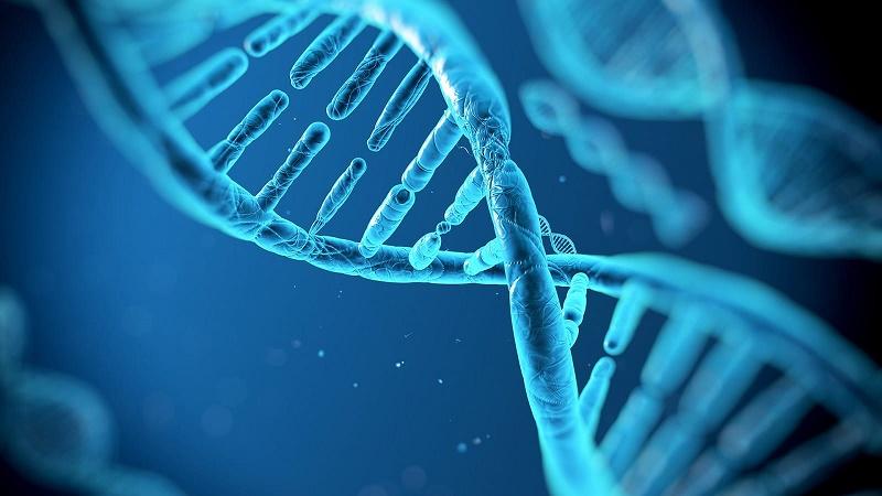Biotechnology Applying the Genetic Revolution