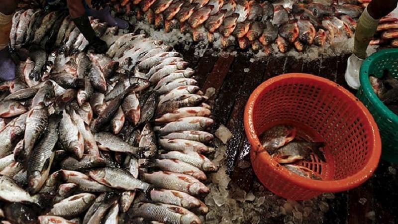 Aquaculture Principles and Practices