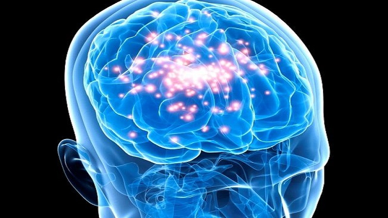 Diseases of The Brain and Nervous System(A Health Education Guide)