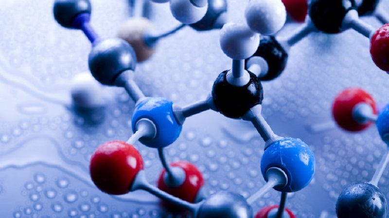 Biochemistry - Lecture Notes, Study Material, Important Questions